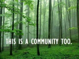 community-forest-pic